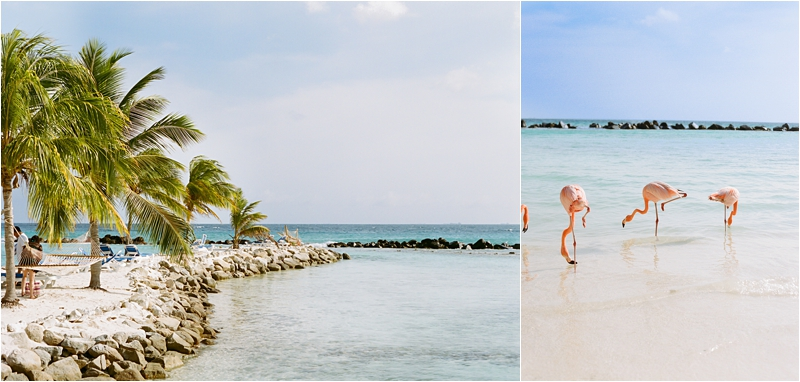 Aruba Wedding film photography
